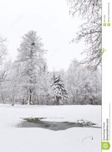 aufgetauter-flecken-im-schnee-winterlandschaften-37015189
